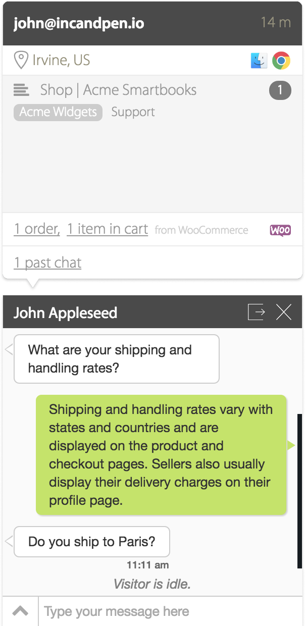 WooCommerce store information on your live chat